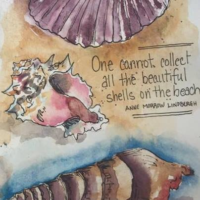 journal, memories, shells, quote